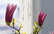 Japanese calligraphy wallpapers. Summer
