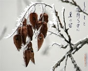 Japanese calligraphy wallpapers Kana Winter